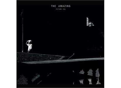 PTKF2111 Partisan  Amazing Picture You (2LP)