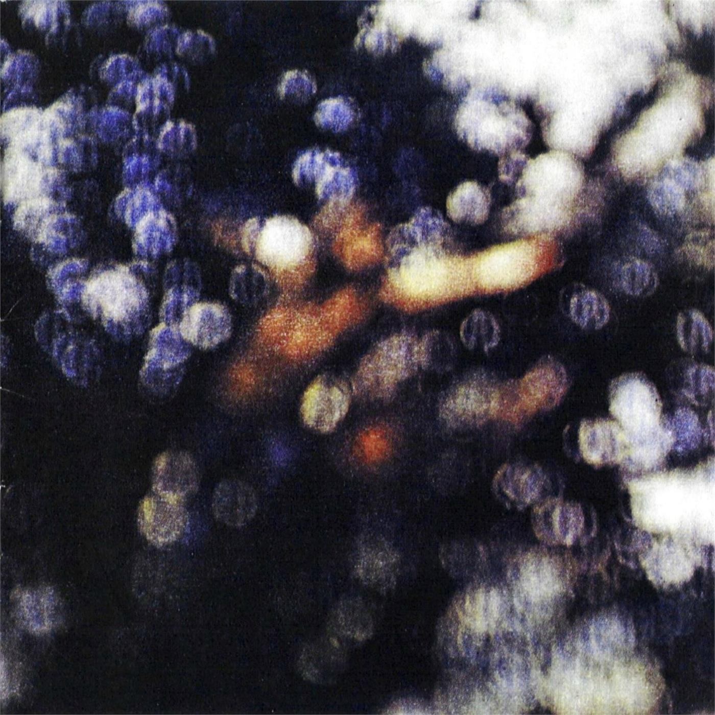 0190295996970 Parlophone  Pink Floyd Obscured By Clouds (LP)