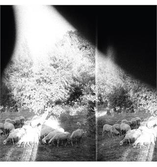 Godspeed You! Black Emperor Asunder, Sweet and Other Distress (LP)