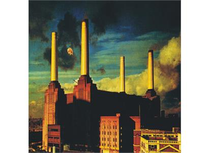0190295996963 Parlophone  Pink Floyd Animals (LP)