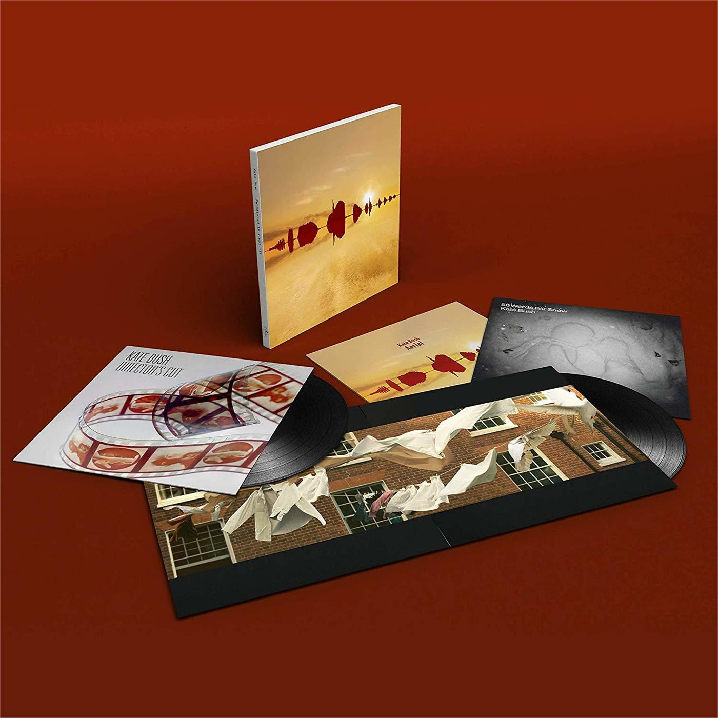0190295593933 Parlophone  Kate Bush Remastered In Vinyl - Box 3 (6LP)