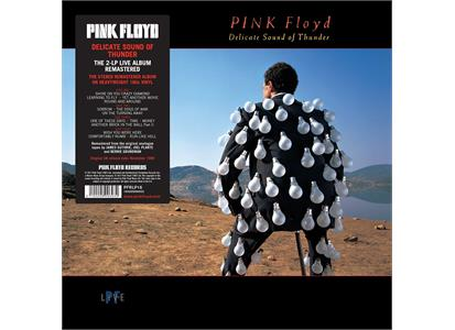 0190295996932 Parlophone  Pink Floyd Delicate Sound Of Thunder (2LP)