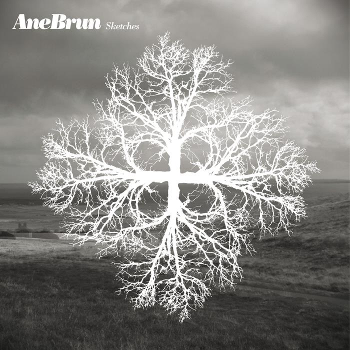 DEMVA09 DetErMine  Ane Brun Sketches (LP)