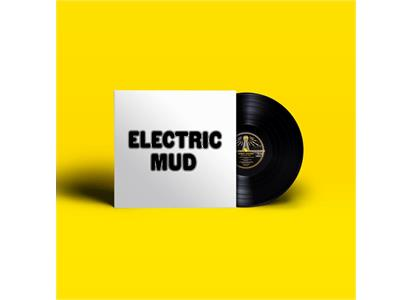 TMR485 Third Man Records  Muddy Waters Electric Mud (LP)