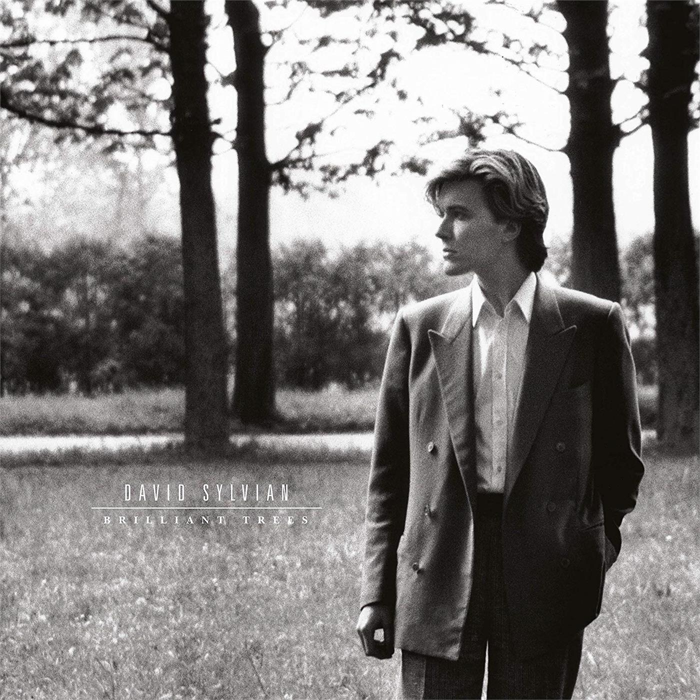 060256795332 Virgin  David Sylvian Brilliant Trees (LP)
