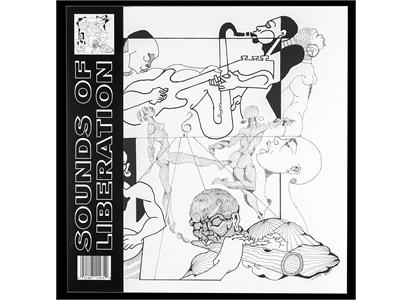 DGTWN-03 Dogtown Records  Sounds Of Liberation Sounds Of Liberation (LP)