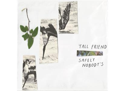 EIS066LP Exploding In Sound  Tall Friend Safely Nobody's (LP)