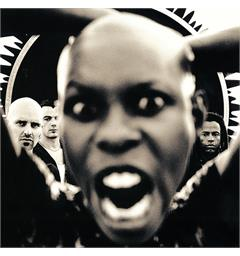 Skunk Anansie Stoosh - LTD (2LP)